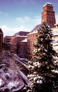 Die Universität im Schee